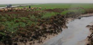 Проливные дожди в Хасеке: анализ стихийного бедствия по открытым источникам