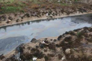 Таинственный разлив на озере Мосул: возможные причины загрязнения